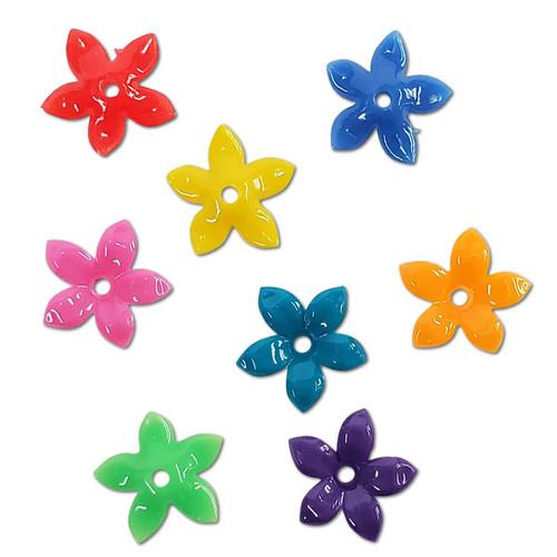 1/4lb Star Flower -