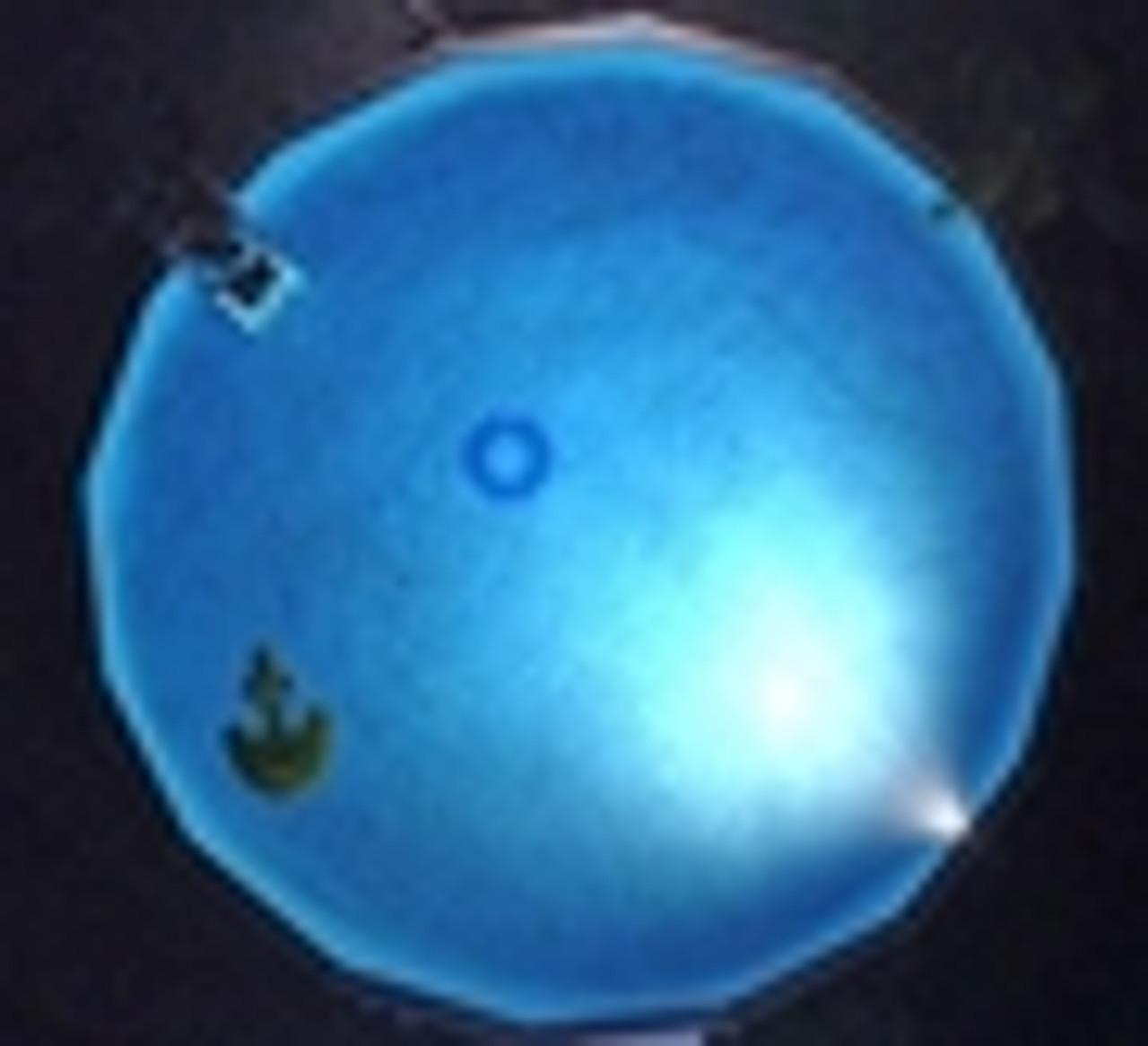 Smartpool, NL50, NiteLighter, night, lite, light, lighter, above, ground, swimming, pool,  50w, FREE SHIPPING