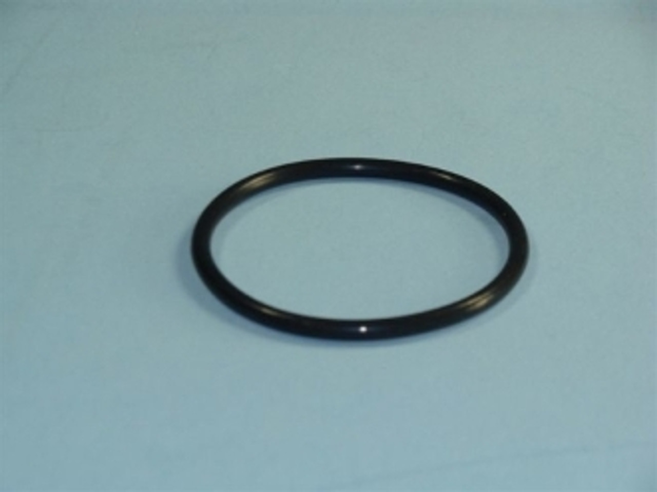 O-Ring for Filter Assembly