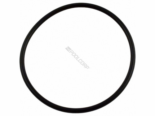 350013  Pentair Strainer Cover O-Ring for Challeger, IntelliFlo, WhisperFlo Pumps