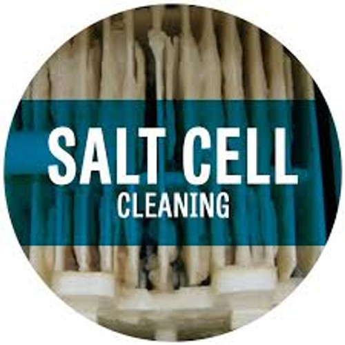 How To Clean A Solaxx Salt Cell