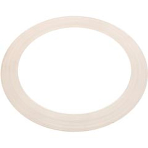 Waterway BaquaPure Gasket for Older Clamp Style Multi Port Valves - 711-1920