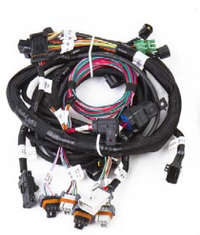 Holley- EFI Modular Main Harness