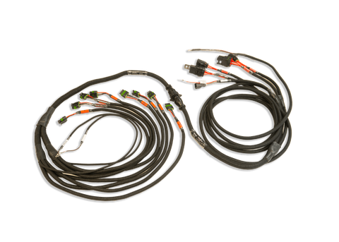 Fueltech - Smartcoil Harness Pro 550 / FT600 FORD V8