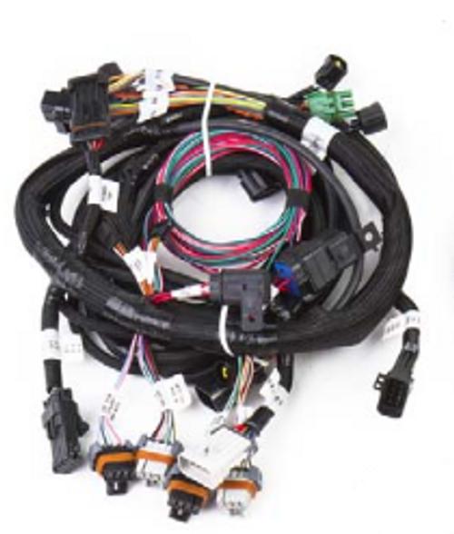 Holley- EFI Modular Main Harness