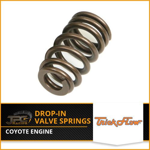 TrickFlow- Drop-in Coyote Valve Springs Kit