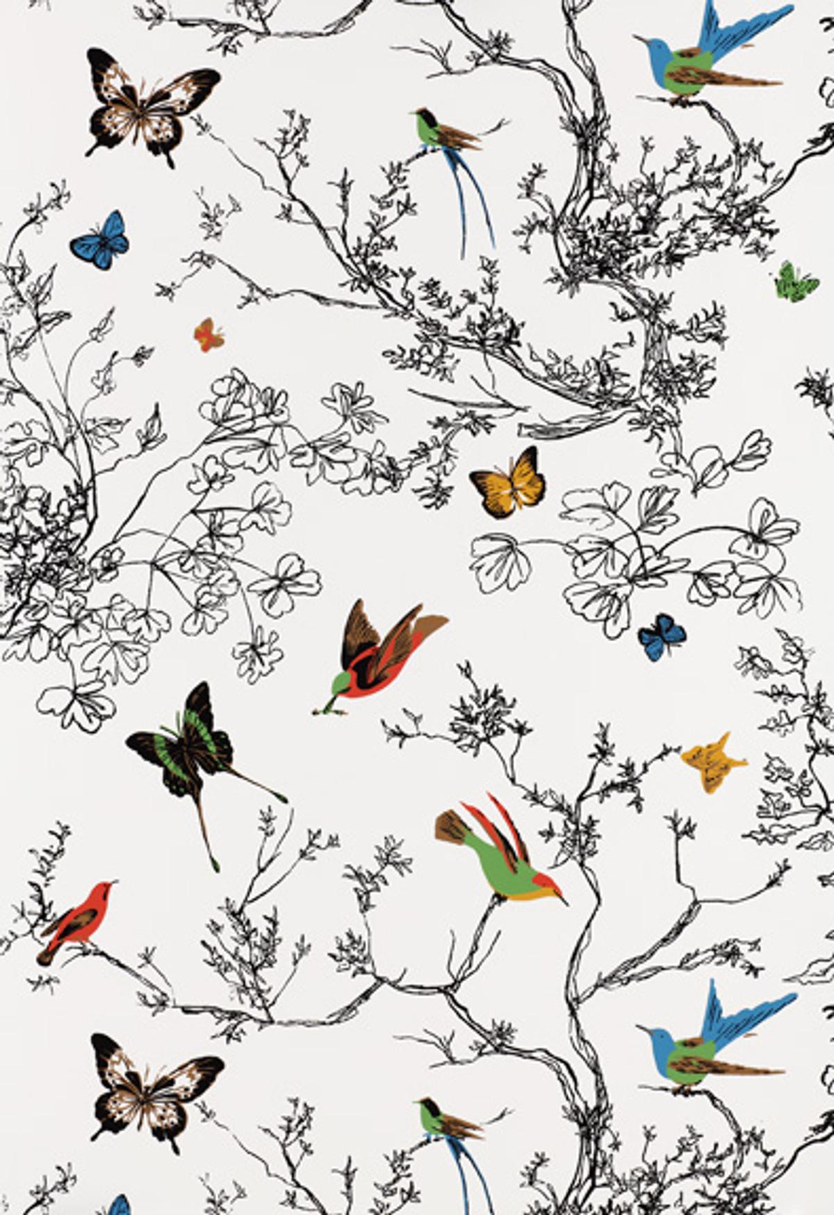 Schumacher Birds And Butterflies Wallpaper