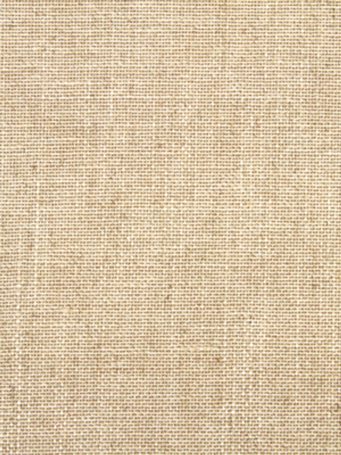 Linen Canvas in Linen