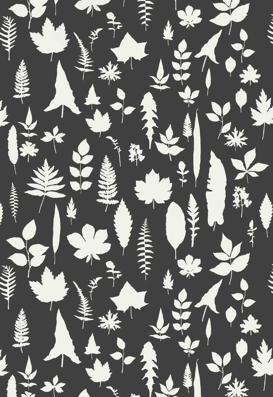 Schumacher Modern Nature Collection Leaves Wallpaper in Graphite  (Priced and Sold by the Yard.  Must order in increments of 8 yards)