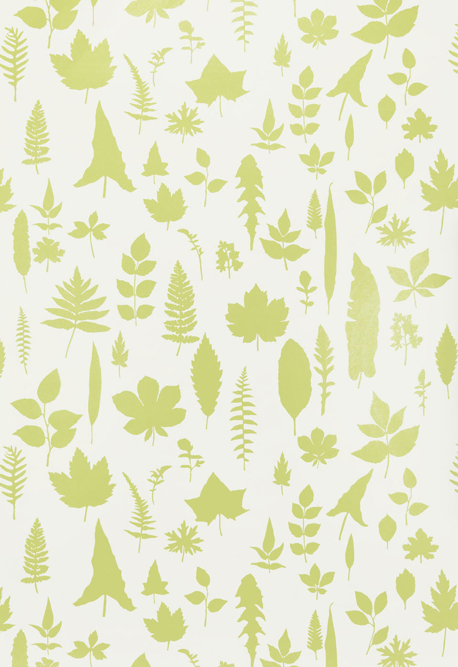 Schumacher Modern Nature Collection Leaves Wallpaper in Chartreuse 5005021 (Priced and Sold by the Yard.  Must order in increments of 8 yards)