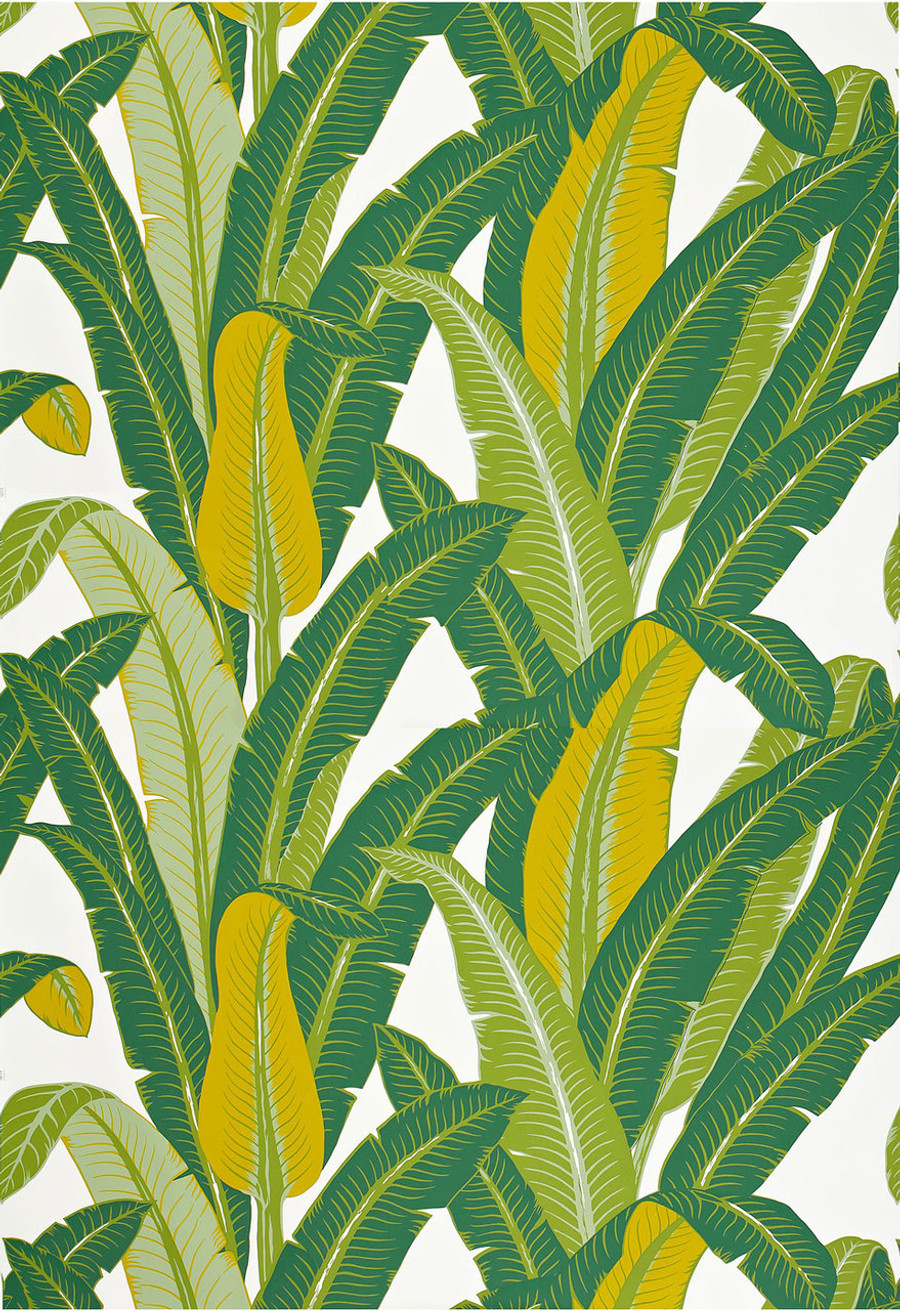 Schumacher Tropical Isle Wallpaper Green on White 2707230 (Priced and Sold by the Yard.  Minimum Order 8 Yards)