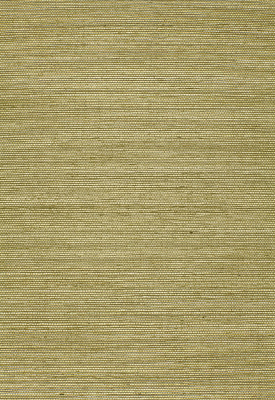 5004709 Olive
