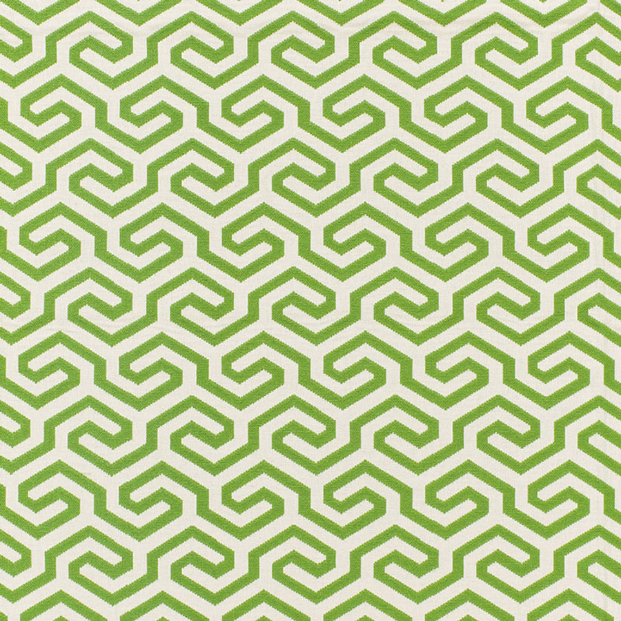 66883 Ming Fret Grass