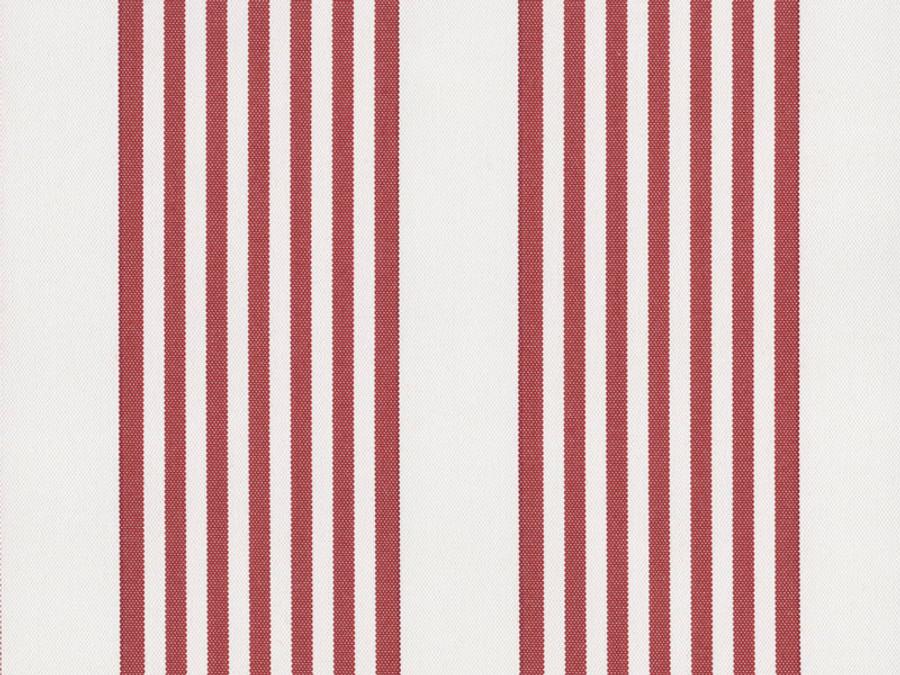 Perennials I Love Stripes Geranium Red 840 75