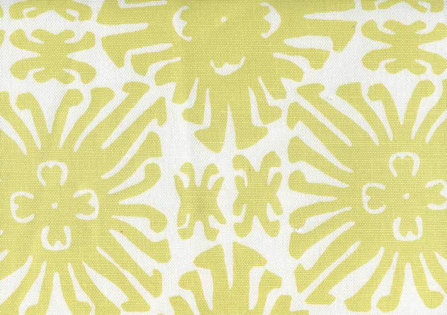 Sigourney Small Scale Chartreuse on white 2475 11