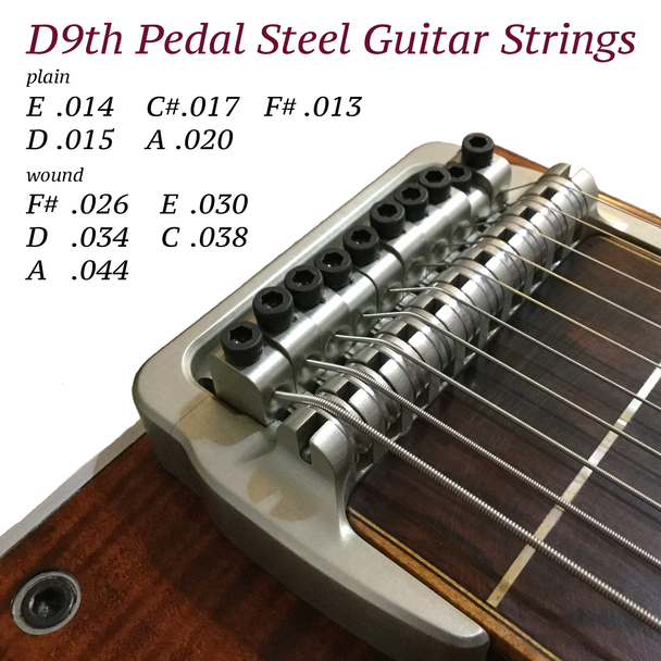 Note: stock image on package shows a Sierra guitar tuned to D6th, not D9th. String gauge listing is correct for D9th.