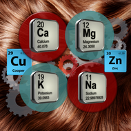 Hair Analysis Testing for Mineral Imbalances and Excess Toxic Metals