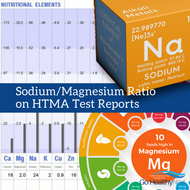 Sodium to Magnesium Ratio on a Hair Analysis Test