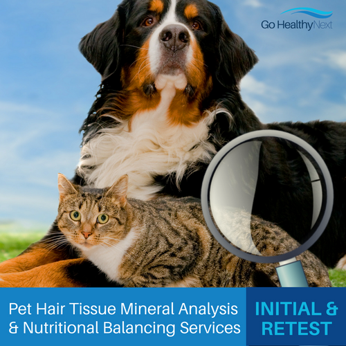 Pet hair tissue mineral analysis services at Go Healthy Next include interpreted and customized nutritional recommendations from Eileen Durfee, NC