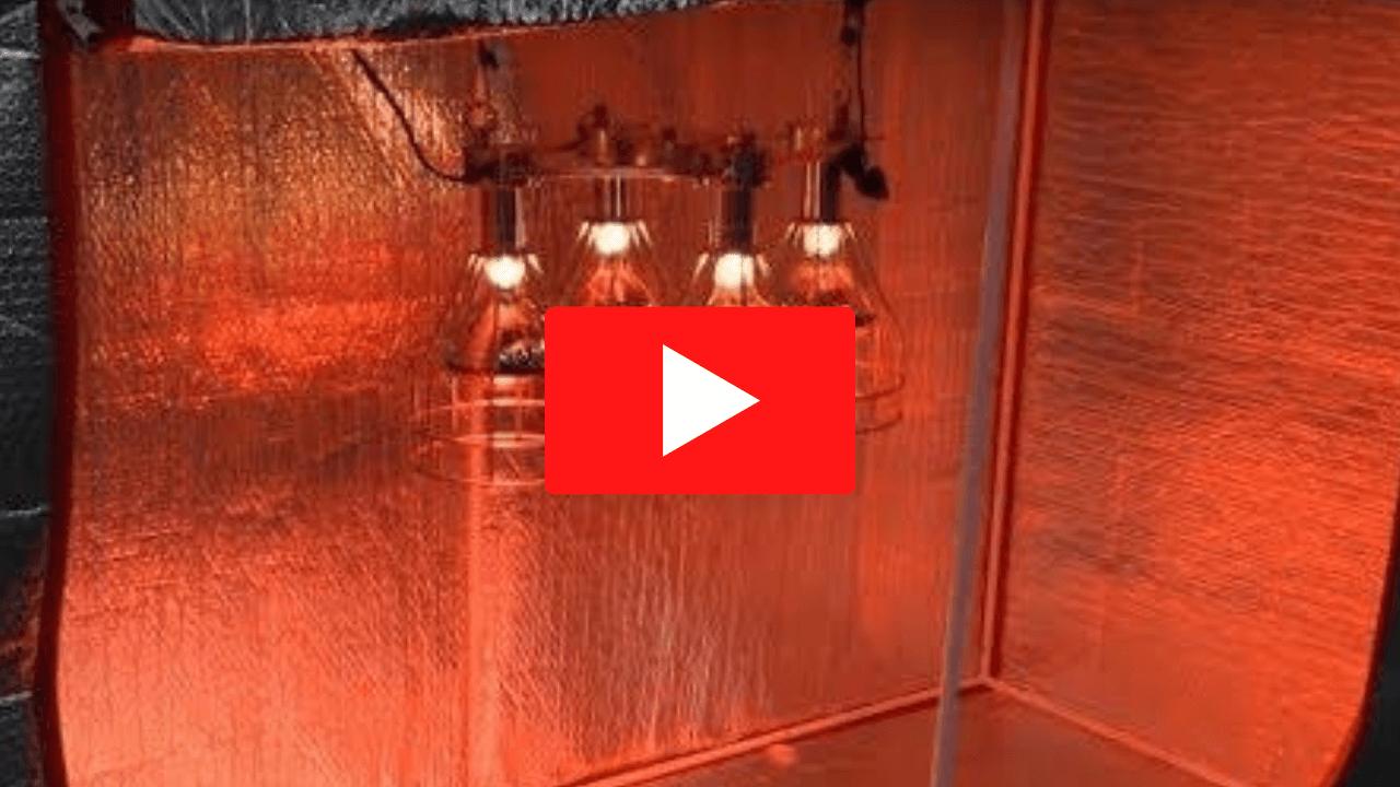 How to Hang Sauna Fix Lamp