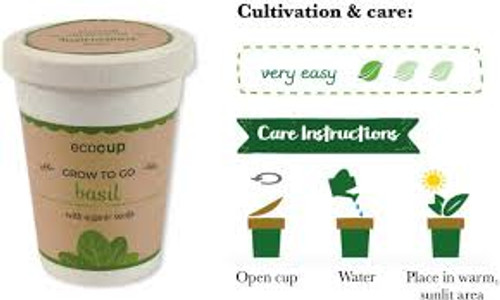 Eco Cup Water & Grow Organic Basil