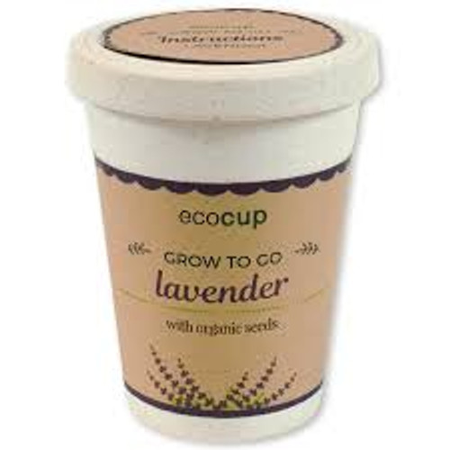 Eco Cup Water & Grow Organic Lavender
