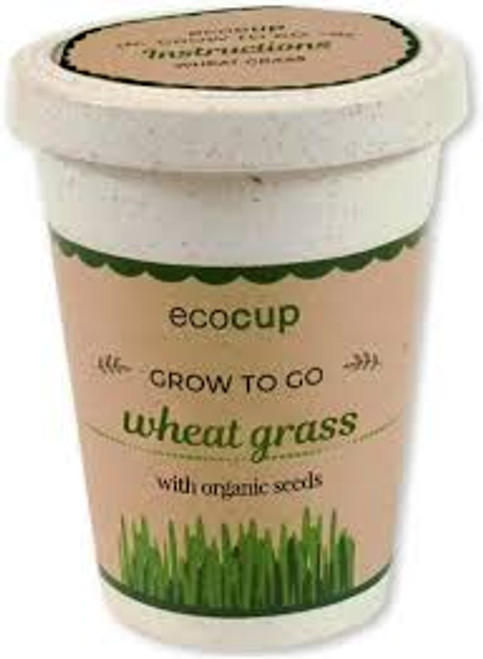 Eco Cup Water & Grow Organic Wheatgrass