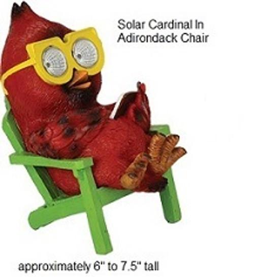 Cardinal solar in Adirondack chair