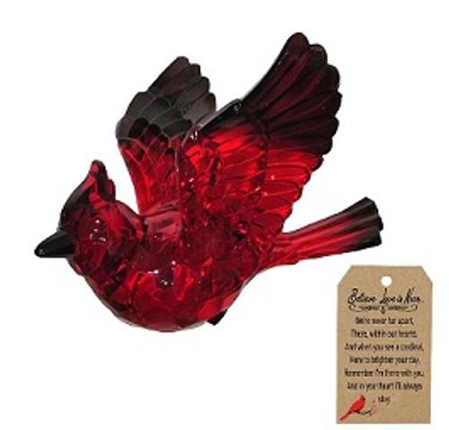 Cardinal Love is near suncatcher