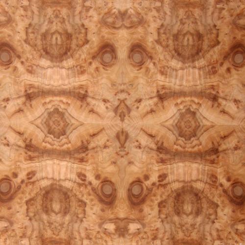 Camphorwood Burl Veneer - Medium Figure