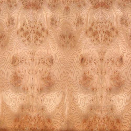 Elm Veneer - Carpathian Burl Low Figure