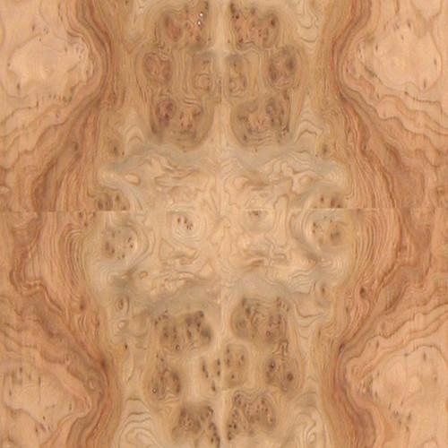 Elm Veneer - Carpathian Burl Medium Figure