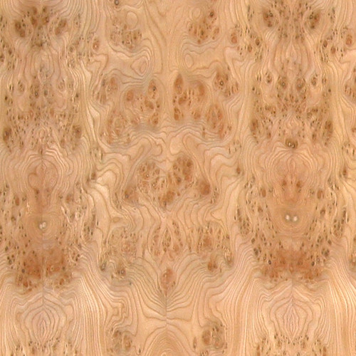 Elm Veneer - Carpathian Burl High Figure