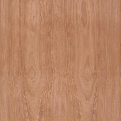 Jequitiba Veneer - Flat Cut