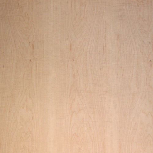 Maple Veneer - Curly Medium Figured