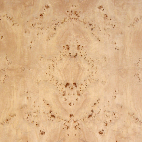 Mappa Burl Veneer - Medium Figure
