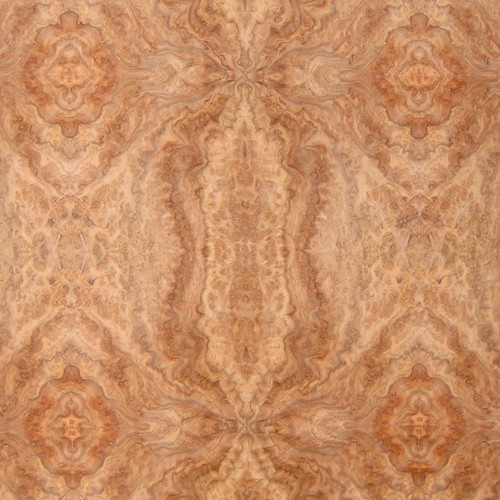 Camphorwood Burl Veneer - High Figure Panels