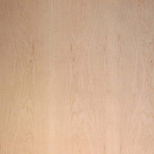 Maple Veneer - Curly Medium Figured Panels