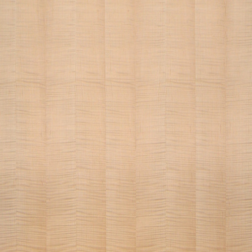 Maple Veneer - Fiddleback Highly Figured Panels