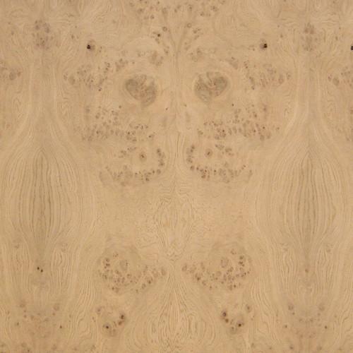 Oak Burl Veneer - Low Figure Panels