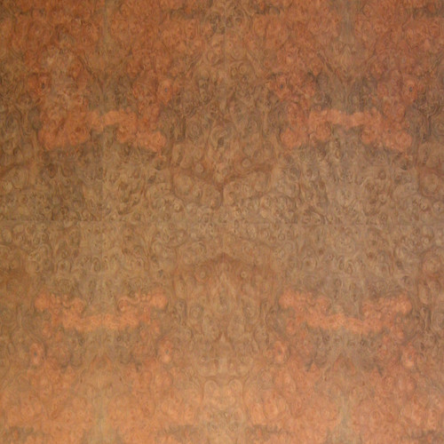 Praline Burl Veneer Panels