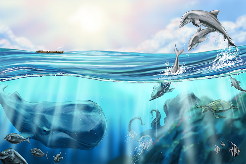 Still Waters / Artwork