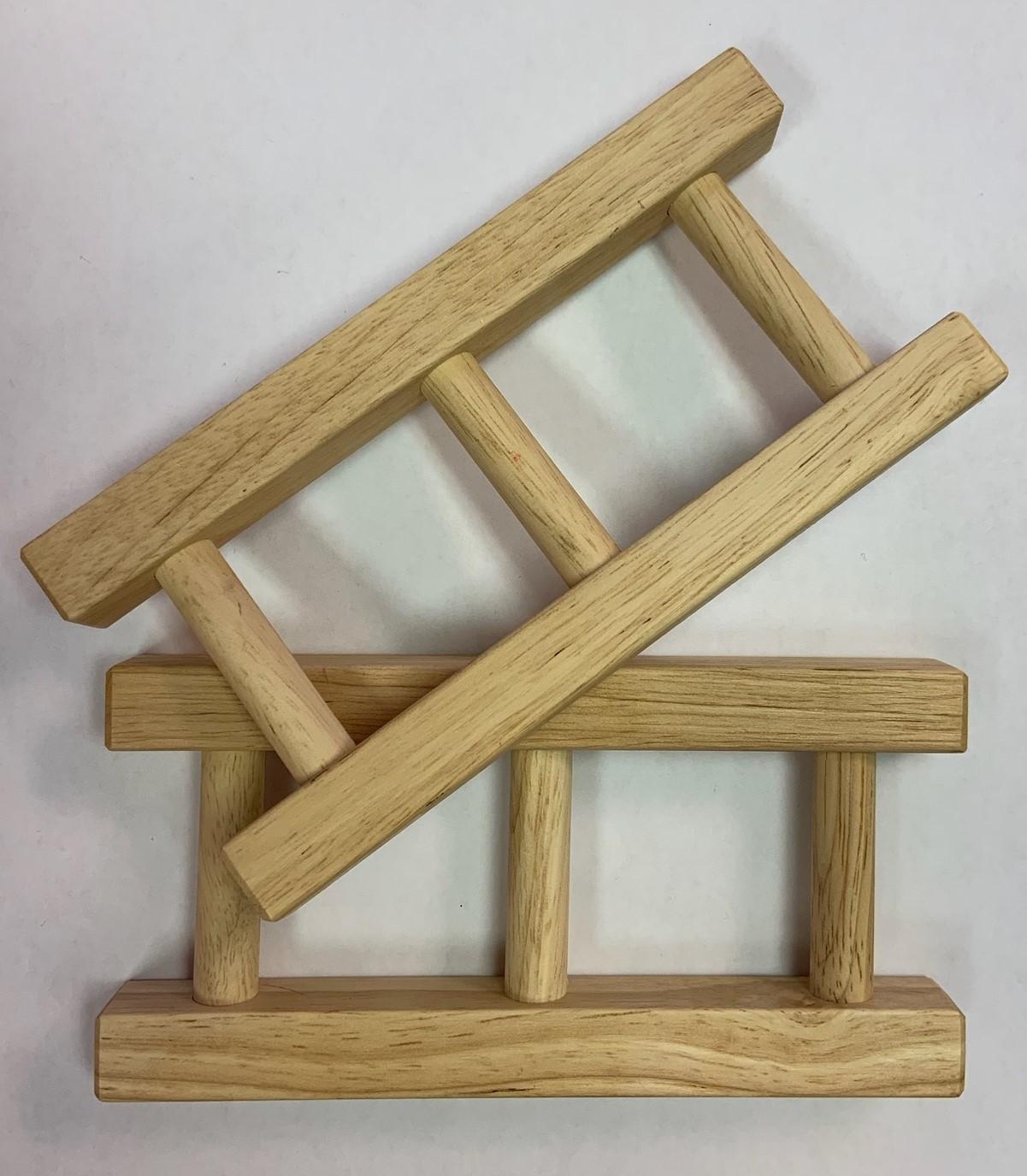 speedster-ladders.jpg