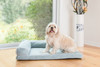 Medium Dog Bed D08B Memory Foam