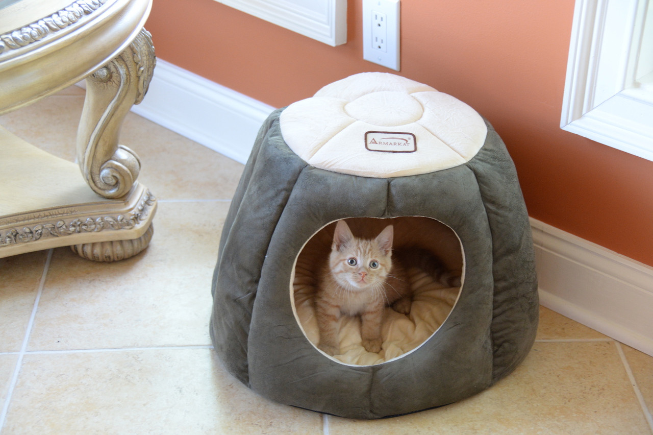 Armarkat Cat Bed C30HML/MH