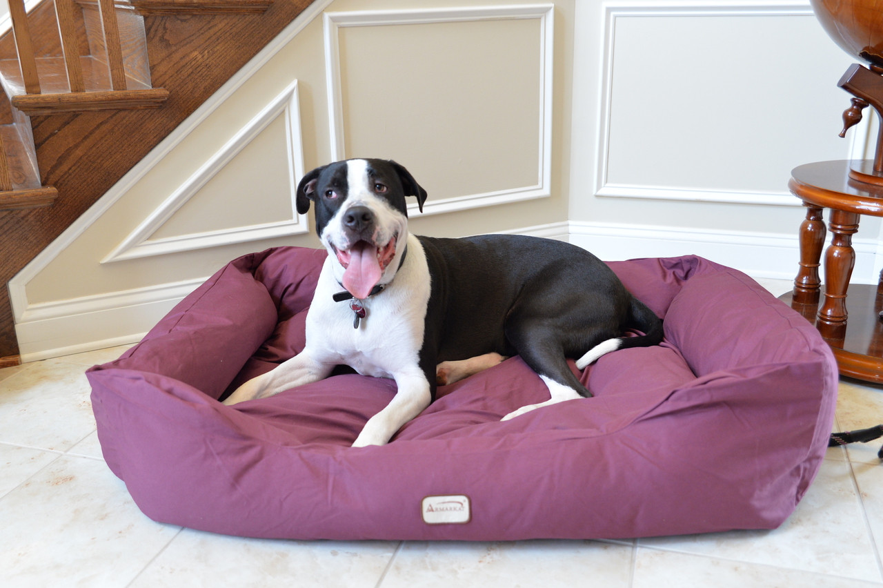 Large Dog Bed D01FJH-L