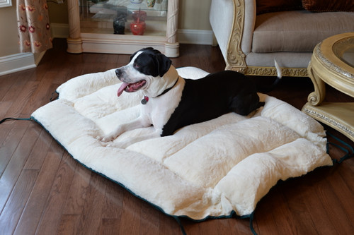 Large Dog Bed & Mat D04HML/MB-L