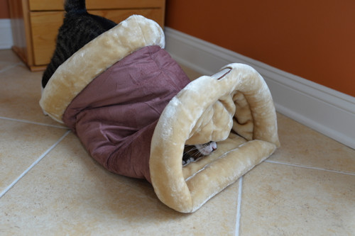 Armarkat Cat Bed C16HTH/MH