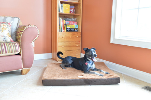 Medium Memory Foam Dog Mat M06HKF/ZS-M (FINAL SALE)
