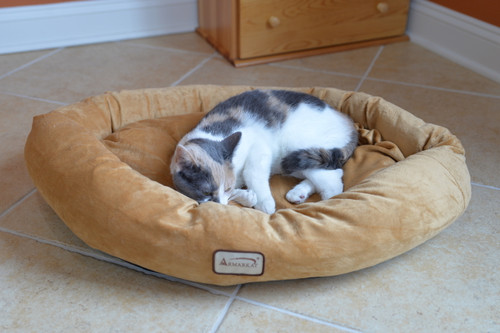 Medium Dog Bed D02CZS-M (FINAL SALE)